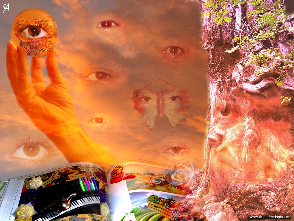 El árbol de los mil cuentos • Álbum de fotos de hadas y ...